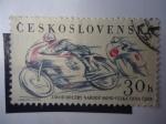 Sellos de Europa - Checoslovaquia -  Ceskoslovensko.