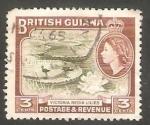 Sellos del Mundo : America : Guyana : 187 - Elizabeth II, y aves acuáticas