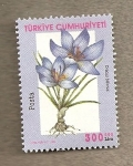 Stamps Asia - Turkey -  Flor Croccus biflora