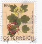 Stamps : Europe : Austria :  flora-