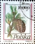 Sellos de Europa - Polonia -  Intercambio 0,75 usd 10000 z. 1993