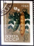 Sellos de Europa - Rusia -  Intercambio cr2f 0,20 usd 6 k. 1964