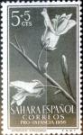Sellos del Mundo : Europa : España : 5 + 5 cent. 1956