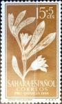 Sellos del Mundo : Europa : España :  Intercambio jxi 0,25 usd 15 + 5 cent. 1956