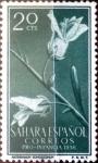 Sellos de Europa - España -  Intercambio jxi 0,20 usd 20 cent. 1956
