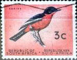 Sellos de Africa - Sudáfrica -  Intercambio 0,20 usd 3 cent. 1961