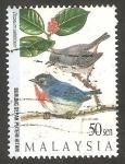 Sellos de Asia - Malasia -  623 - Pájaros de montaña, dicaeum celebicum
