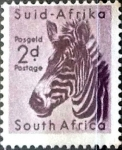 Stamps South Africa -  Intercambio 0,20 usd 2 p. 1954