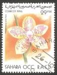 Stamps Morocco -  Sahara - Flor