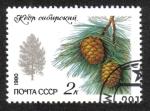 Sellos de Europa - Rusia -  Árboles y Arbustos Protegidos