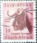 Sellos del Mundo : Africa : Sudáfrica : Intercambio 0,20 usd 1 p. 1954