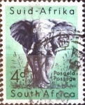 Stamps : Africa : South_Africa :  Intercambio 0,20 usd 4 p. 1954