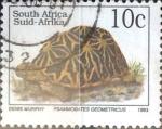 Sellos de Africa - Sudáfrica -  Intercambio cxrf 0,20 usd 10 cent. 1993