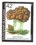 Stamps Bulgaria -  Hongos