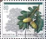 Sellos de Europa - Suiza -  Intercambio 0,55 usd 80 + 40 cent. 1992