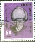 Stamps : Asia : Turkey :  Intercambio 0,20 usd  50 k. 1967