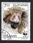 Stamps Bulgaria -  Hamsters