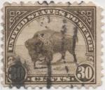 Sellos de America - Estados Unidos -  Y & T Nº 244