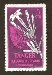 Stamps Spain -  Telegrafos Tanger
