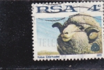Stamps : Africa : South_Africa :  Kobus Esterhuysen