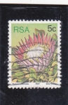 Stamps : Africa : South_Africa :  flora-Protesec