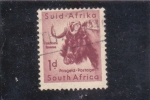 Stamps : Africa : South_Africa :  lacomste
