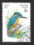 Stamps Hungary -  Pajaros