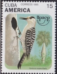 Sellos de America - Cuba -  Ave