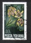 Stamps Romania -  Rumania