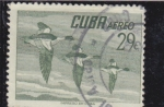 Stamps : America : Cuba :  bandada de patos