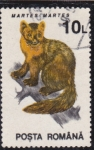 Stamps Romania -  fauna de los bosques