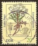 Sellos de Europa - Alemania -  Las plantas venenosas-té labrador, Ledum palustre-DDR.