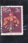 Sellos de Africa - Sudáfrica -  flores