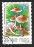 Sellos del Mundo : Europa : Hungría :  Mushrooms (1984)