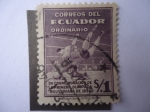 Stamps Ecuador -  En conmemoración de la Primera Olímpiada Bolivariana de 1938