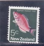 Sellos del Mundo : Oceania : Nueva_Zelanda :  pez