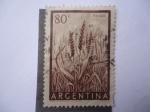 Stamps Argentina -  Trigo.