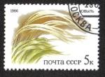 Stamps Russia -  Plantas de Las Estepas Rusas