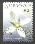 Sellos del Mundo : Europa : Eslovenia : 558 - Flor moehringia tommasinii