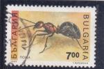 Stamps Bulgaria -  hormiga