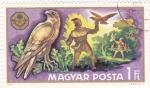 Sellos de Europa - Hungría -  adiestramiento de alcones