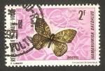 Stamps : Africa : Burkina_Faso :  Alto Volta - 243 - Mariposa hamanumida daedalus