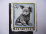 Stamps Hungary -  Canis Familiaris - Magyar Posta.