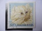 Sellos de Europa - Hungría -  Kremszinu Angora Macska - Magyar Posta.