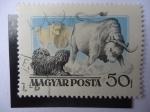 Sellos de Europa - Hungría -  Magyar Posta.