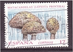 Stamps Spain -  serie- Micologia