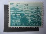 Sellos de Asia - Indonesia -  Flora: TEH.