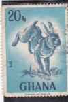 Sellos de Africa - Ghana -  conejo