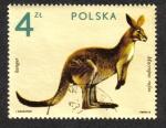 Sellos del Mundo : Europa : Polonia : Kanguaro