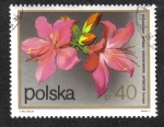 Stamps Poland -  Rododendro japonicus